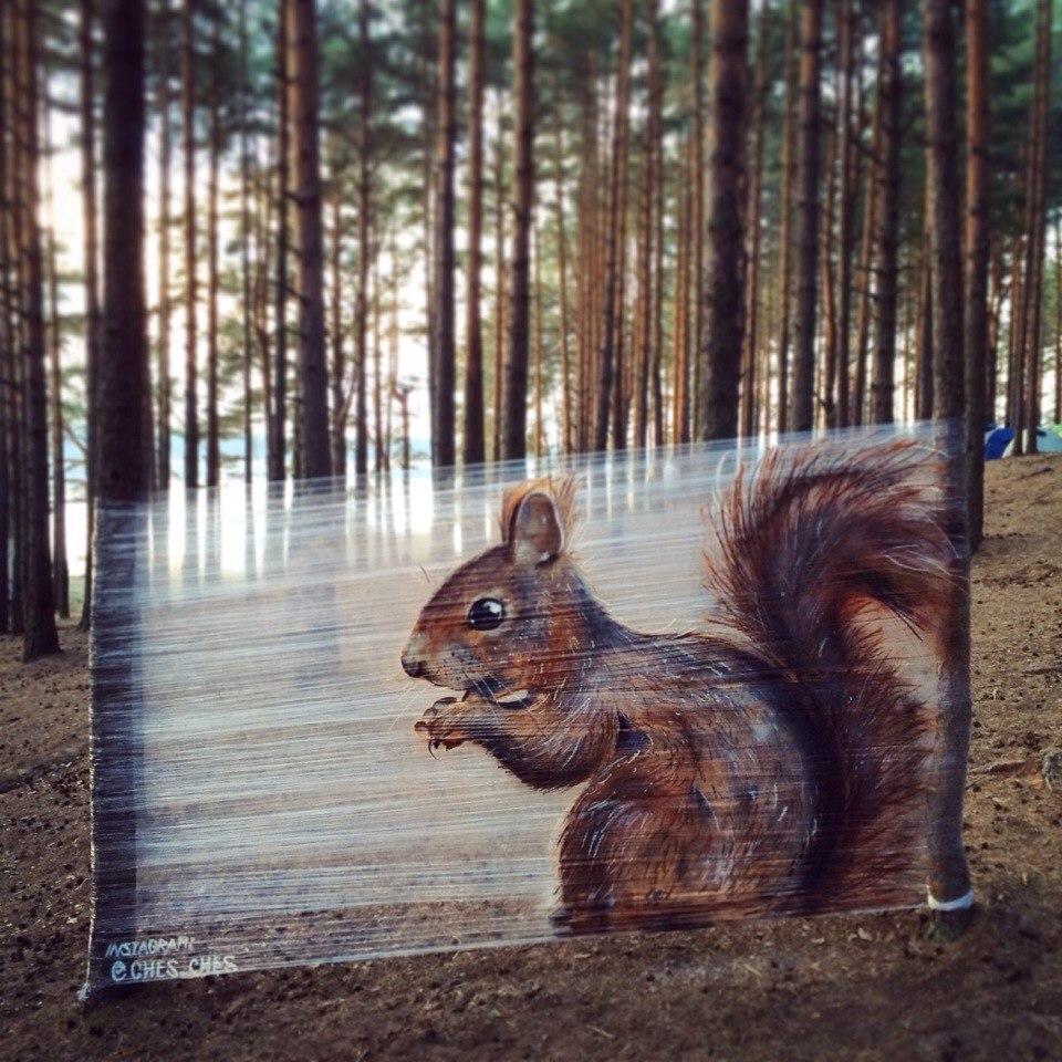 Cellograffiti squirrel